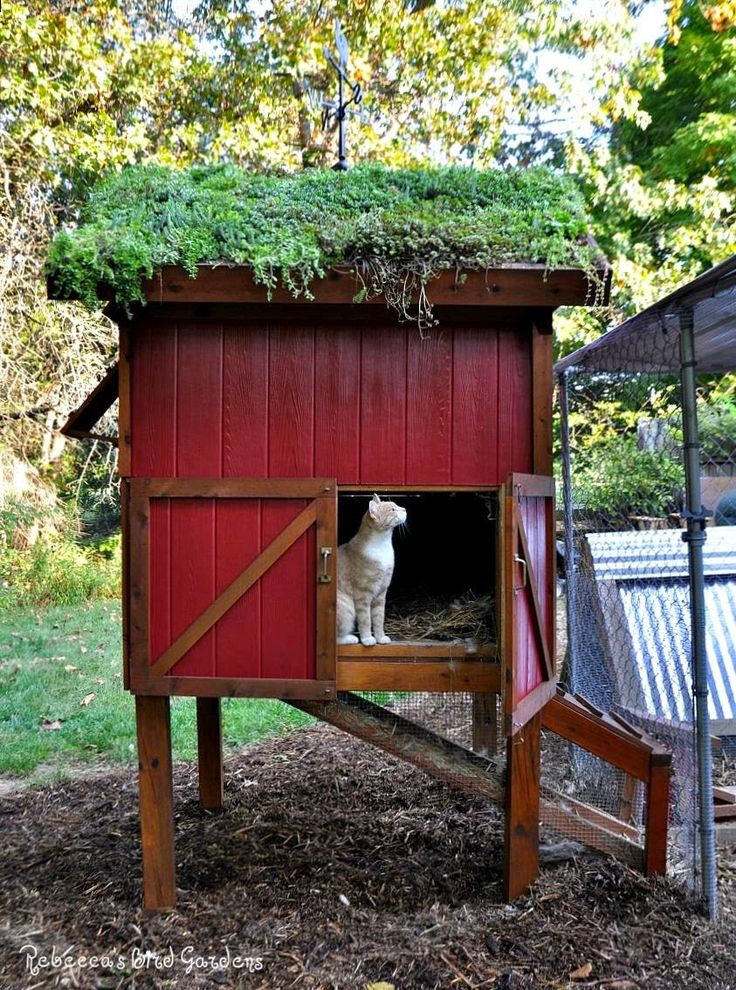 253 best images about cool coops on pinterest mobile for Cool chicken coop plans