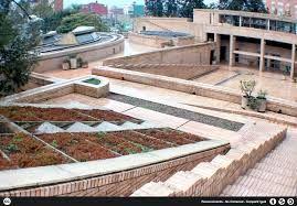 Resultado de imágenes de Google para http://www.bogota.unal.edu.co/imagenes/wp-content/uploads/2013/02/0009_UN_BTA_PosChumanas_12_NGalindo.j...