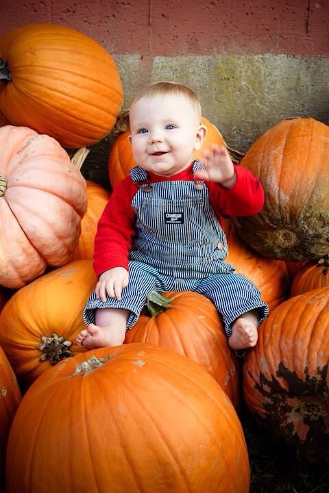 Pumpkin patch 9 month pictures
