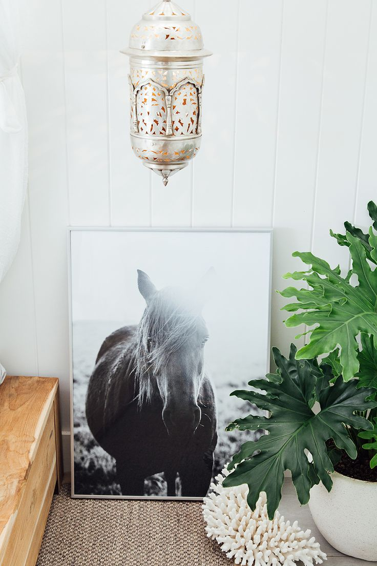 Pampa Horse print from Argentina. Photo: Victoria Aguirre. Styled by Courtney Reeman