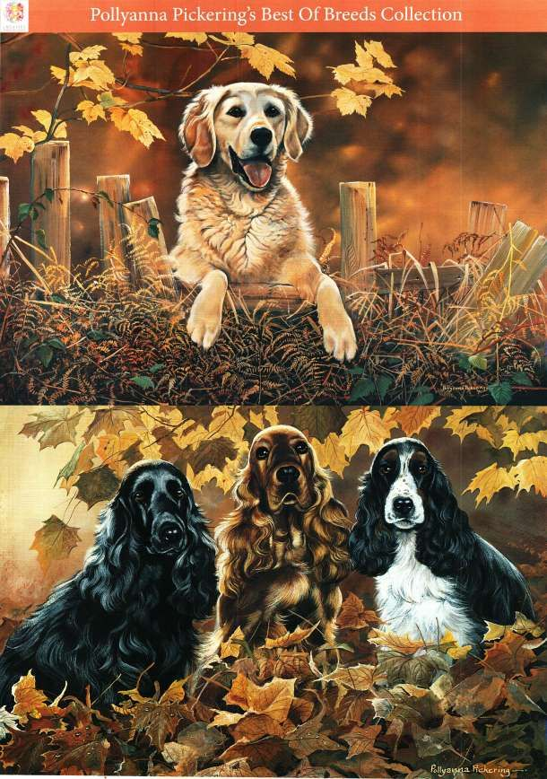 Pollyanna Pickering Best of Breed traditional decoupage - Dogs #15 - retriever, cocker spaniel