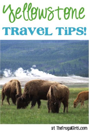 Yellowstone National Park Vacation Tips!  25 Fun Things to See and Do at Yellowstone + tips for traveling with kids, packing list ideas, top  photo spots and more! {What to Know Before You Go}