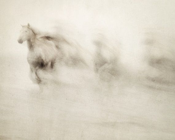 Abstract photograph of the wild white horses of the Camargue region in France galloping through the water.   TITLE: The Ghosts Among Us  Via Etsy