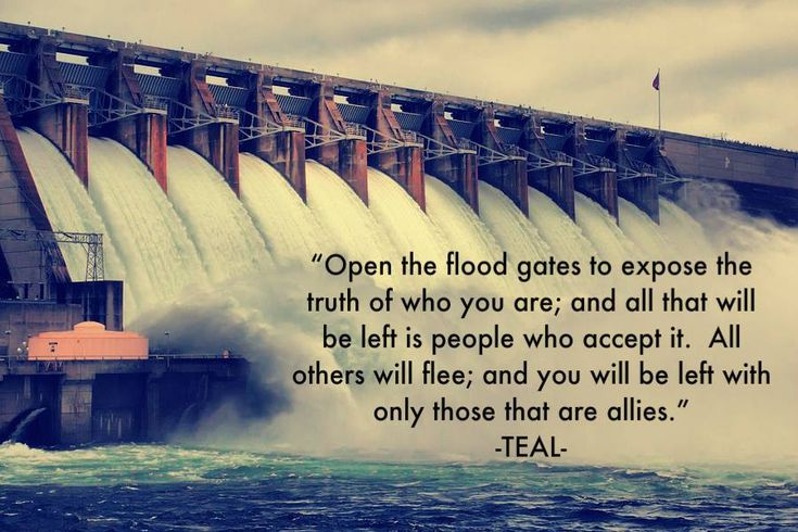 """""""Open the flood gates to expose the truth of who you are; and all that will be left is people who accept it. All others will flee; and you will be left with only those that are allies."""" Quote by Teal Swan (The Spiritual Catalyst)"""