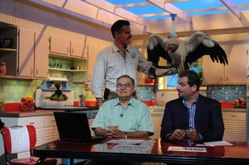 My review of Dan Le Batard is Highly Questionable