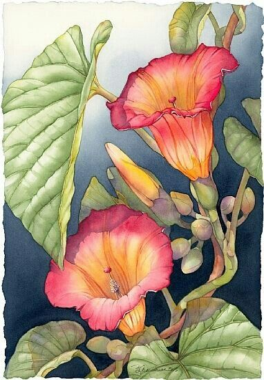 Watercolor painting.