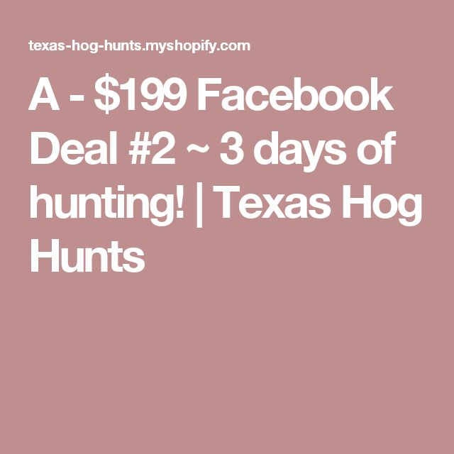 A - $199 Facebook Deal #2 ~ 3 days of hunting! | Texas Hog Hunts