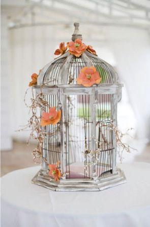 orange flowers cage bird