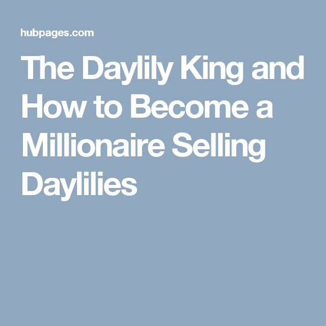 The Daylily King and How to Become a Millionaire Selling Daylilies