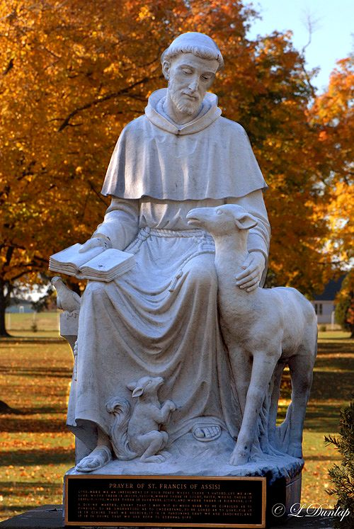 St. Francis of Assisi-Patron Saint of Animals
