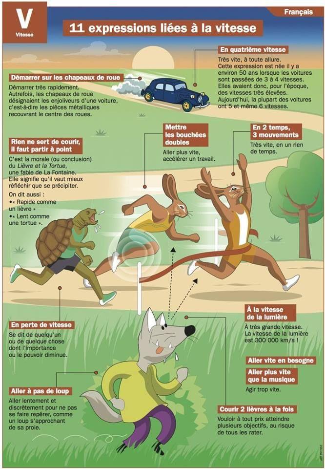 11 expressions liées à la vitesse