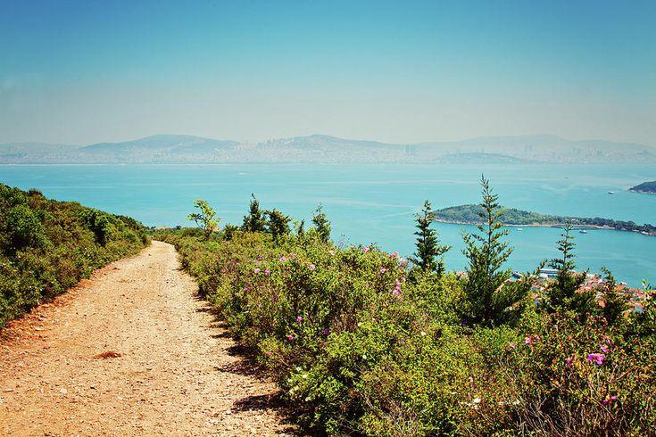 Istanbul Photograph - Road To The Beauty, Istanbul, Burgazada, Princess Adalar by Svetlana Yelkovan  #SvetlanaYelkovanFineArtPhotography  #ArtForHome #FineArtPrints #Istanbul #Sea #Travel #Island #Nature #Landscape