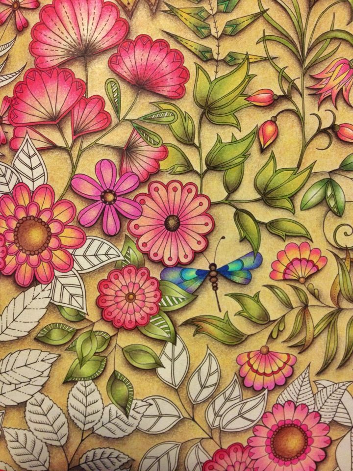 Big Flowers Double Page Find This Pin And More On Secret Garden Coloring Book