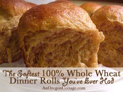 Soft 100% Whole Wheat Dinner Rolls - An Oregon Cottage | An Oregon Cottage
