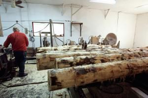 How to Calculate Timber Prices: Investigate Rough Lumber Prices