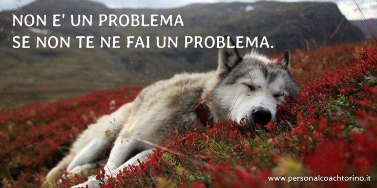 Non è un problema, se non  te ne fai un problema.