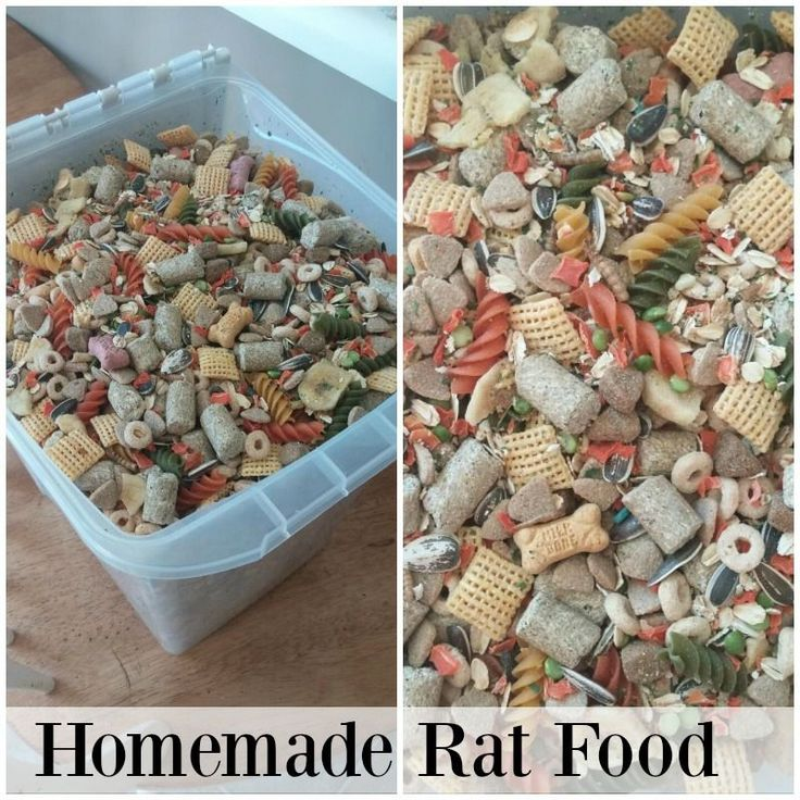 This Homemade Rat food is amazing. Your Rats will be eating like kings!