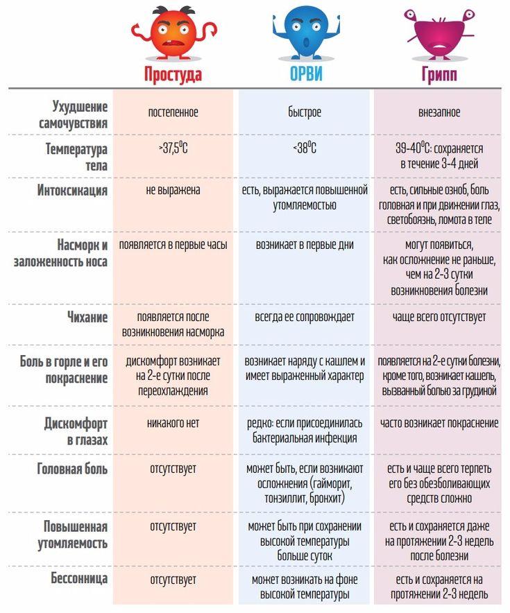Как отличить грипп от простуды и ОРВИ (ИНФОГРАФИКА) (фото) - фото 1