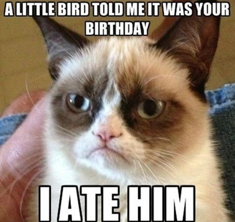 This is a special meme for my aunt Karen. I will also post it on her Facebook wall. Happy birthday (Aug 11), Karen!