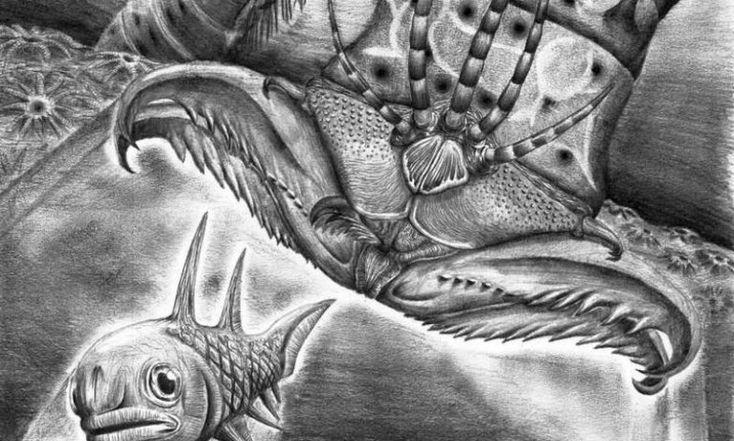 ごく最近、巨大なオニイソメの祖先が化石として発見され、名前が付けられました。その名も「ウェブスタロプリオン・アームストロンギ(Websteroprion armstrongi)」。あのデスメタルバンド、カンニバル・コープスのベーシストであるアレックス・ウェブスターの名前をもとに命名したそうです。