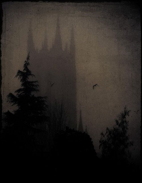 Shrouded in fog and darkness the walls loom over the forest.