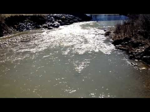 Relax and de-stress a little by watching Fish Creek flow by on a beautiful afternoon.