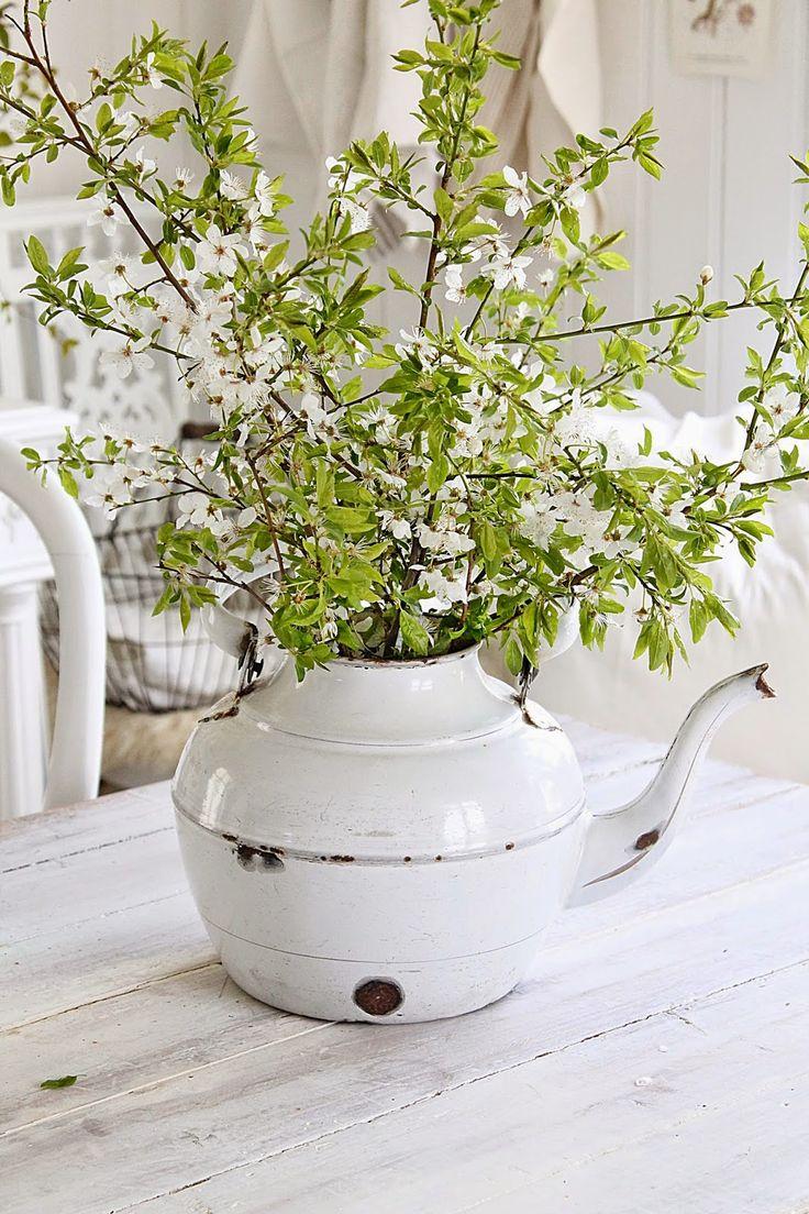 Når jeg om vårenser et tre fullt av hvite små blomster.....ja da blir jeg heeelt fortapt :) Det er bare noe av detvakreste jeg vet og ...