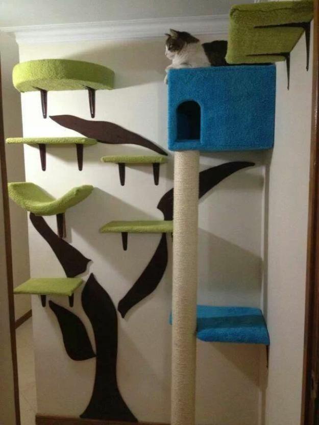 Colorful Wall Cat Perches Cat Wall Shelves Cat Room Cat Furniture