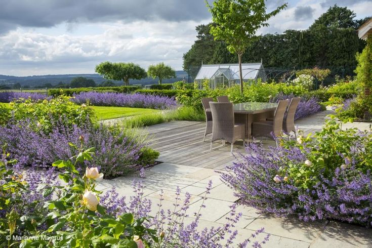 Sweeps of catmint and roses create calming landscape