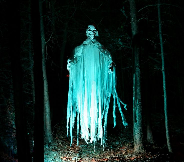 1090 best Props images on Pinterest Halloween prop, Halloween - haunted forest ideas for halloween