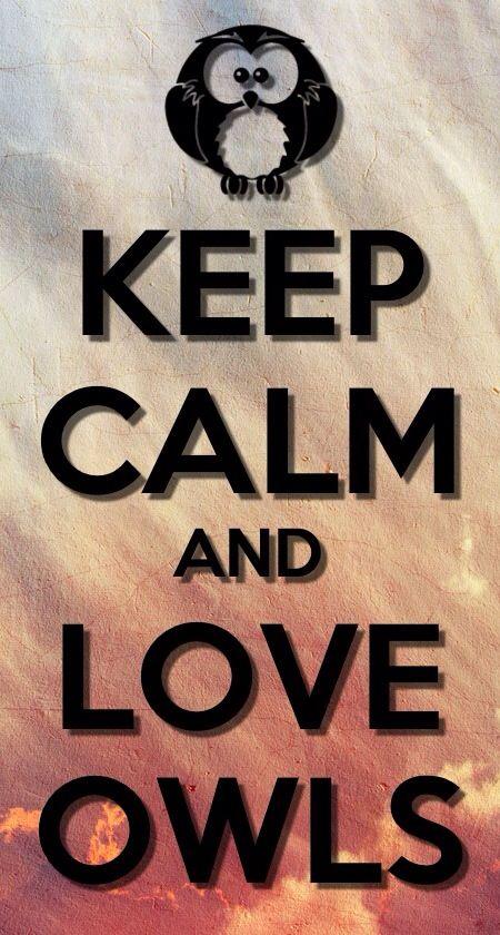 KEEP CALM AND LOVE OWLS!!