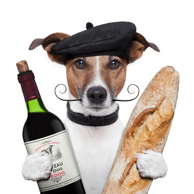 French Dog with Wine, Baguette and Beret Poster. Great image on a poster. Perfect for Movember, LOL.