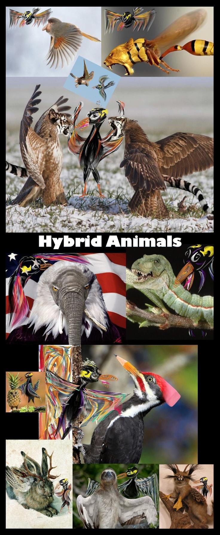 http://isense4u.de/isense4u_2012/Spiral_Dynamics.html #Sensy entdeckt https://vine.co/v/bUJ650IlIWH #Hybrid_Animals, http://www.reddit.com/r/HybridAnimals/ #Chimaeren oder bayerisch #Wolpertinger http://www.spiegel.de/netzwelt/web/photoshop-kunst-norweger-strickt-schnabelpferde-a-895129.html Sind sie ein bloßes Konstrukt der #Phantasie oder Ausdruck unseres permanenten #Rollenspiel s. Bist Du mit Deiner #Rolle einverstanden? #pieps_mich_an zum kostenfreien Erstgespräch 08822 25 40 10