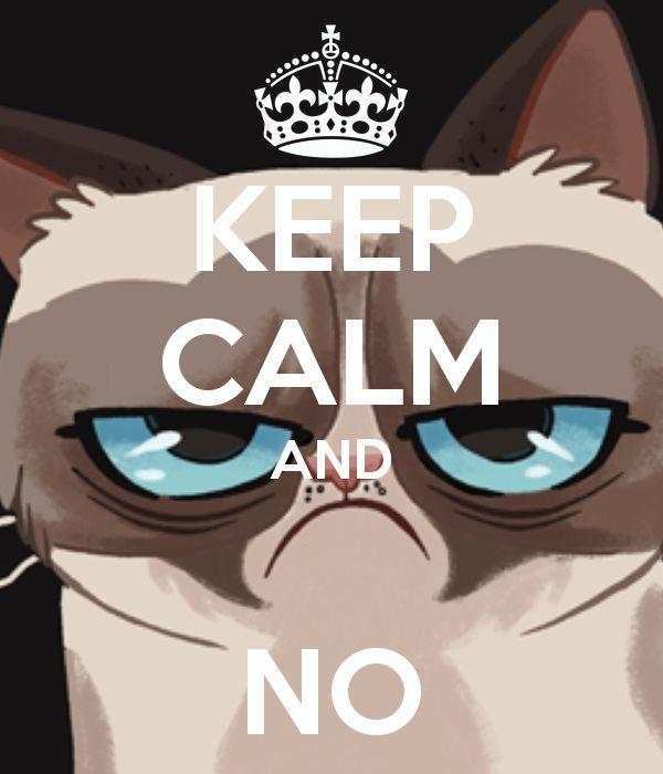 Keep calm and NO  p.s. Chronicle Books ha pubblicato il libro di Grumpy Cat