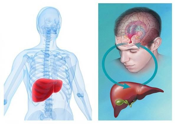 Cosa succede al fegato quando le emozioni vengono represse