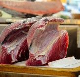 Japanese Government Officials Feast on Whale Meat to Protest World Court Ruling | Inhabitat - Sustainable Design Innovation, Eco Architecture, Green Building