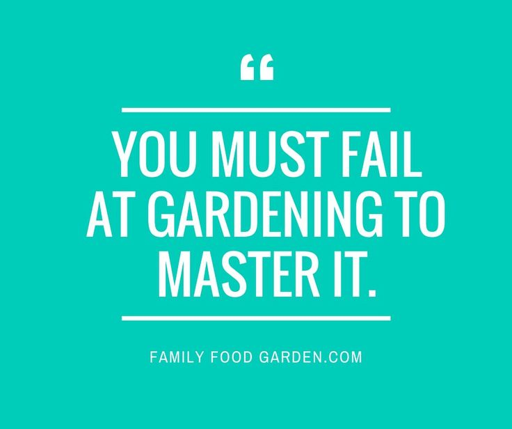 """Gardening thought for the day - """"You must fail at Gardening to master it"""". #Gardening #Quote #Garden"""