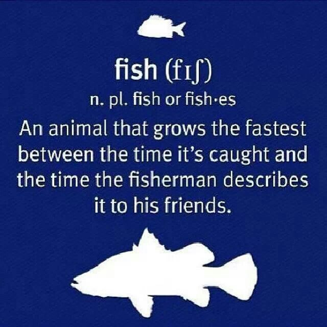 Fish - the animal that grows the fastest between the time it's caught and the fisherman tells his friends