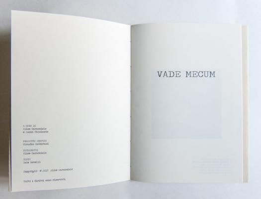 Vade Mecum pt.2 | GAi - Giovani Artisti italiani