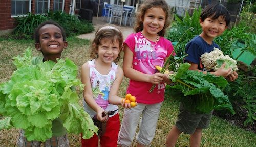 35 Service projects your Daisy Girl Scouts can do.