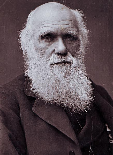 Charles Darwin by Herbert Rose Barraud