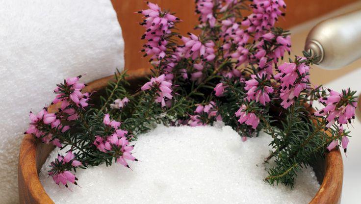 Epsom soľ je zázrakom nielen vo vani. V záhrade vám môže šikovne pomôcť.
