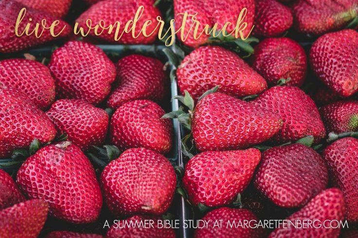 Summer Bible Study and get your FREE Live Loved Coloring book!  #livewonderstruck #liveloved http://margaretfeinberg.com/summer-bible-study-invitation/
