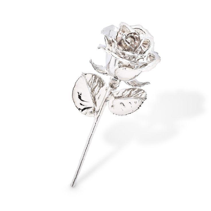 Een platina roos is een waardevol en uniek cadeau voor een bruiloft. Met dit originele huwelijkscadeau zit jij gegarandeerd goed! #bruiloft #roses