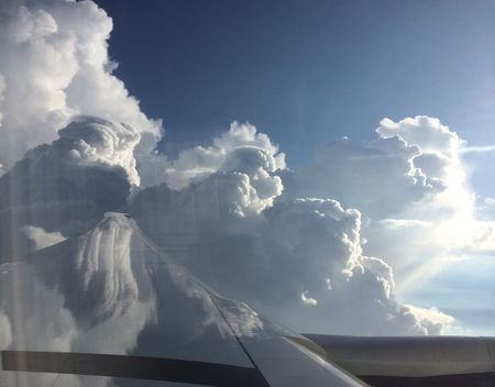 Cliche Wing Photo Photo by Dana C Spires — National Geographic Your Shot