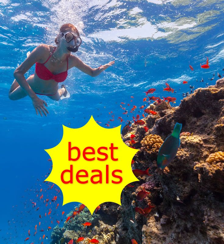 Enjoy savings on Barbados activities, tours and attractions. Many offer specially discounted rates when you book directly with them, along with seasonal deals and special limited offers.