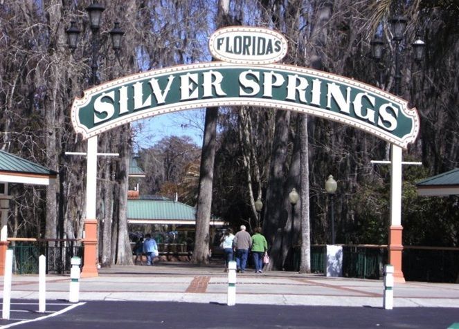 silver springs in Ocala, Florida - home of the glass bottom boats | Silver Springs - such an amazing look into the underwater world