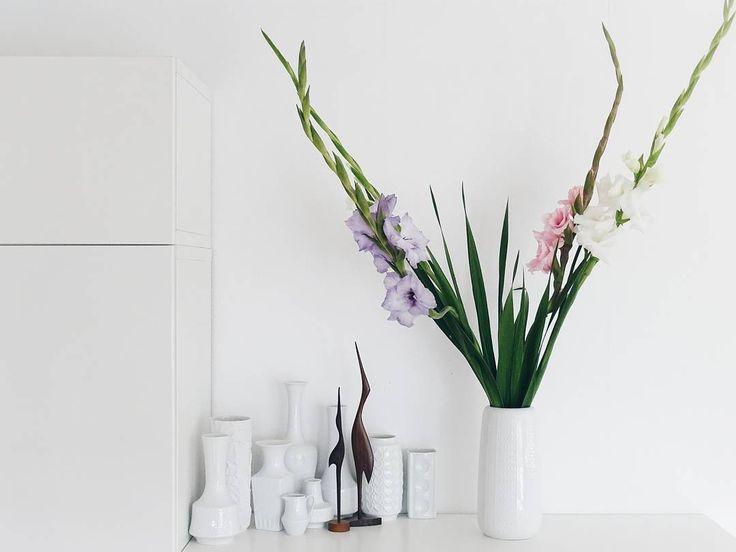 . Für mehr Pflück-Glück im Leben  Spontan mit den Kindern ein Gladiolen-Pflückfeld entdeckt... Und zugegriffen. So lange günstige und frische Exemplare gibt's in meinem Blumenladen nicht. . . . #freshlypicked  . . . #juliaspflückglück #gladiolen #blumen #flowers #flowerslovers #flowersmakemehappy #flowerblogger #flowerstyling #solebich #atmine #shelfie #homedecor #interior_and_living #finditliveit #whiteinterior #tv_living #tv_allwhite #vasensammlung #slowliving #theartofslowliving…