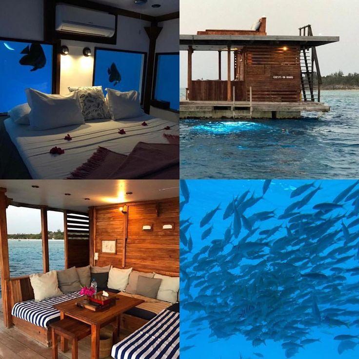 Manta Resorts magical underwater room    Wildatheartjourneys.com