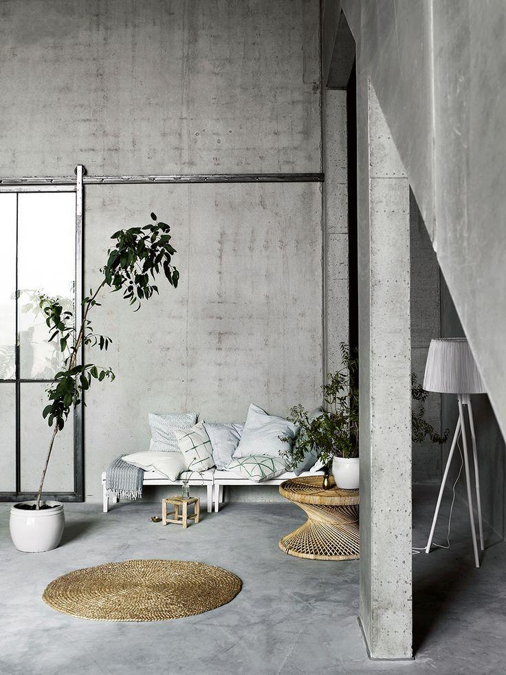 Rebecca Centren - concrete walls green plants white floor lamp